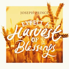 Expect A Harvest Of Blessings