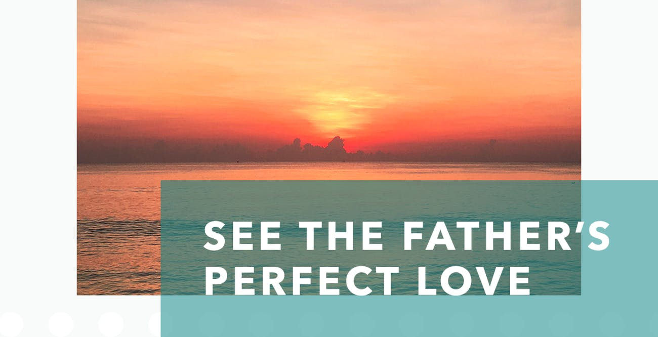 Joseph Prince Daily Devotional 29 August 2020 - See the Father's Perfect Love