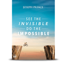 See The Invisible, Do The Impossible (2-DVD Album – NTSC)