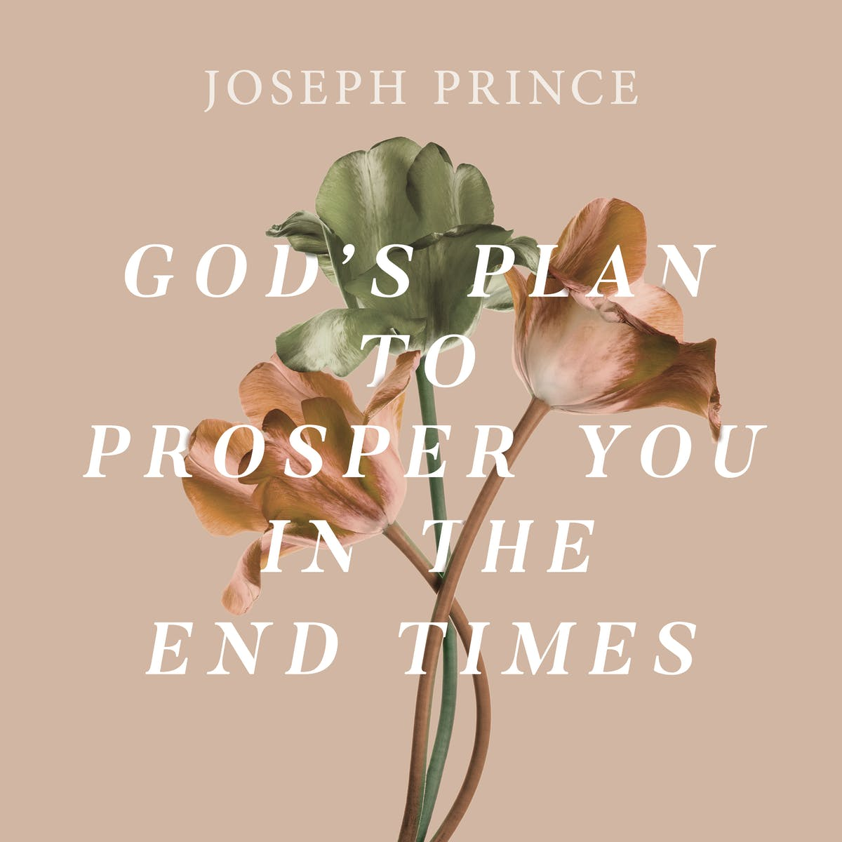 God's Plan To Prosper You In The End Times | Official Joseph Prince
